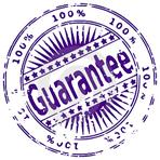 genworth-aig-cmhc-guarantee
